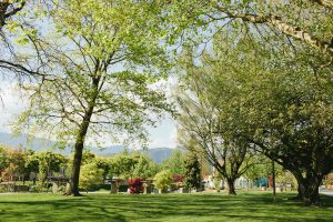 Beautiful Greenspaces in Chilliwack
